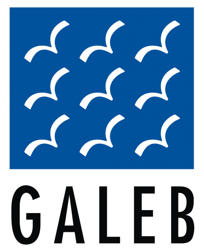 Galeb Group